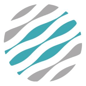 The AMI logo